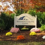 Blue Ridge Equine Clinic
