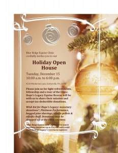Holiday open house flyer-page-0